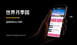 北京网站开发